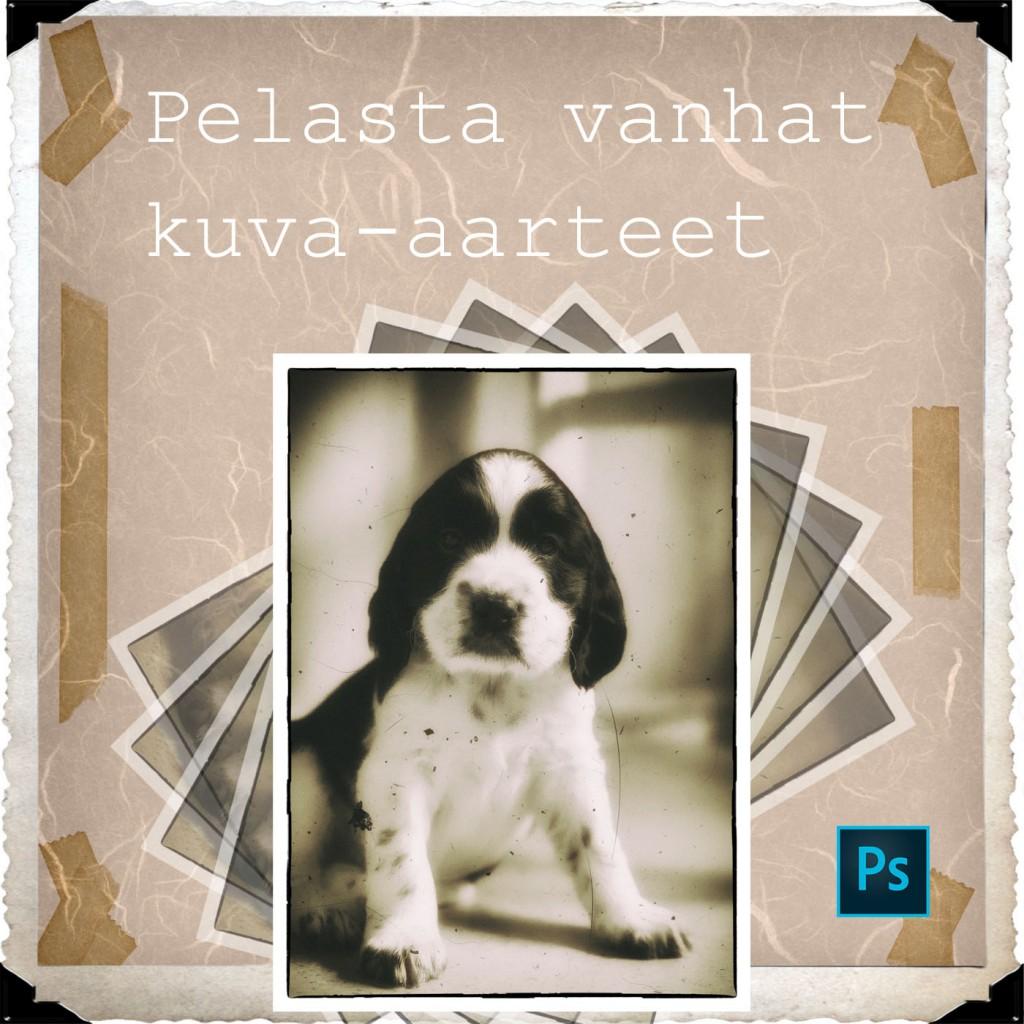 Pelasta_vanhat_kuva-aarteet